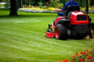 Weekly-Lawn-Service